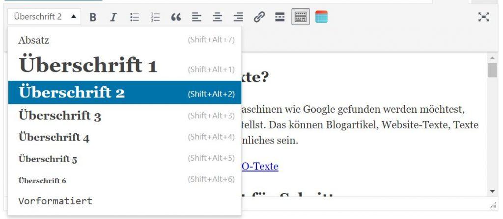 In WordPress das Text-Format auswählen